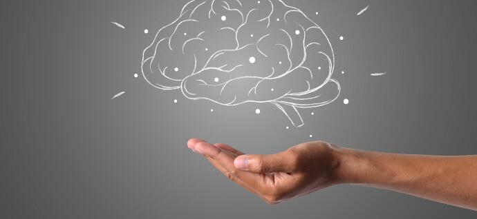 Drawn brain in a hand