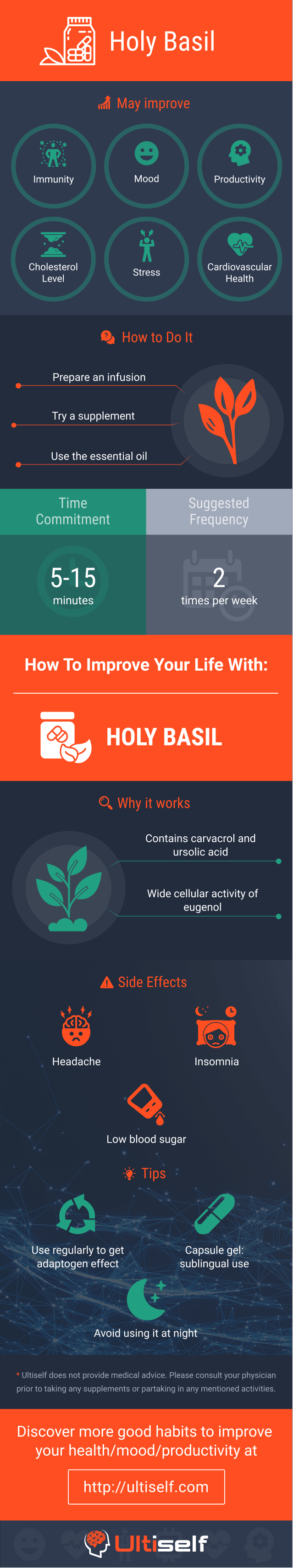 Holy Basil infographic