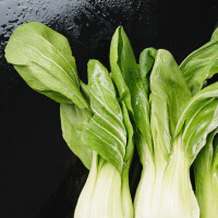 Eat Bok Choy picture