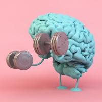 Neuroplasticity Training picture