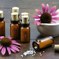 Take Echinacea picture