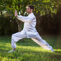 Qi Gong picture